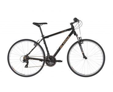 Alpina ECO C10 Black  2021